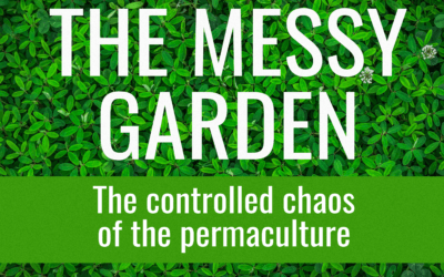 Permaculture – The controlled chaos